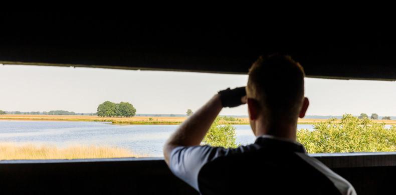 RCN-de-Noordster-vakantiepark-in-Dwingeloo-uitzicht-op-landschap