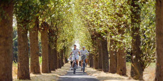 Radfahren in Brabant