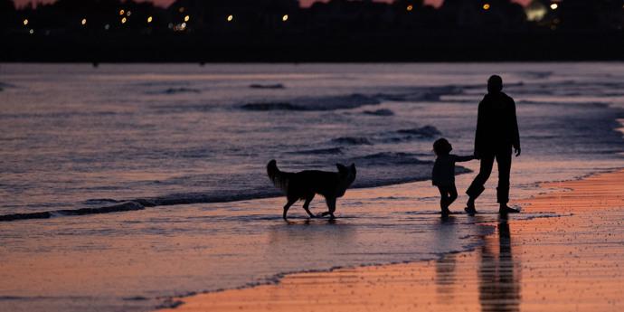 Vakantie met de hond in Vendée