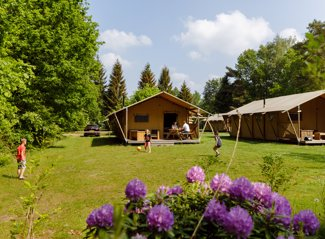 Safaritent de Wold Lodge