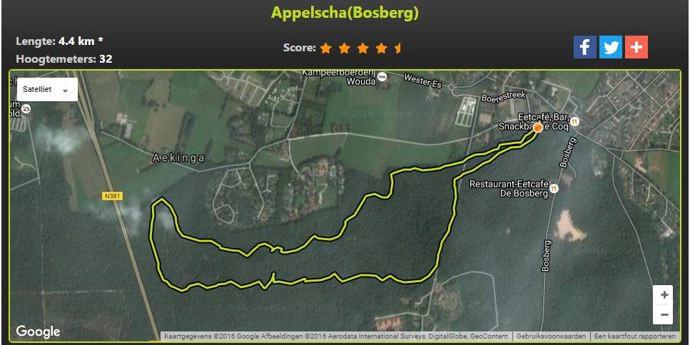 Appelscha (bosberg)