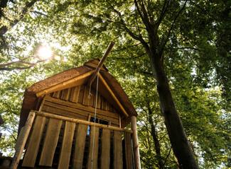 Tentkampeerplaats op de Wildenberg met boomhut
